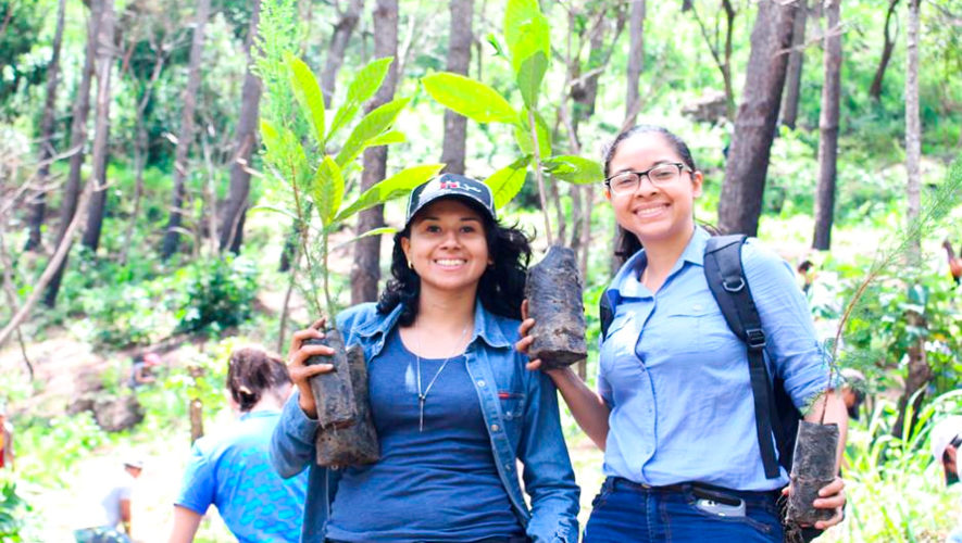 Convocatoria de voluntarios para sembrar árboles en Aldea El Jocotillo en mayo 2019