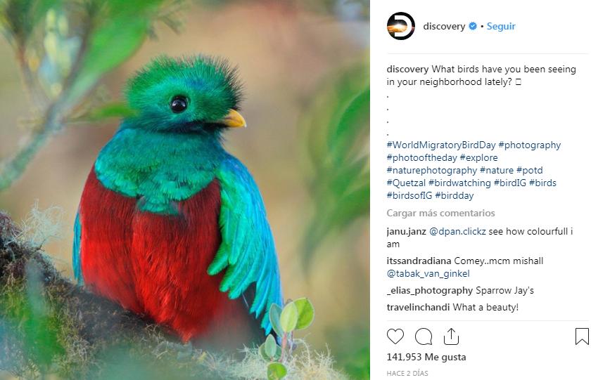 Foto del Quetzal fue publicada en Discovery