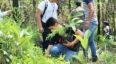 Jornada de reforestación en Chimaltenango | Mayo 2019