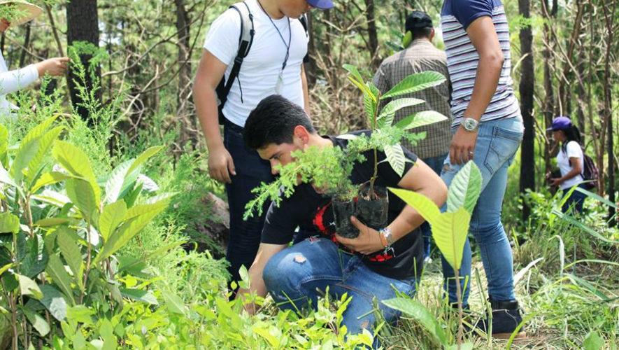 Jornada de reforestación en Chimaltenango   Mayo 2019