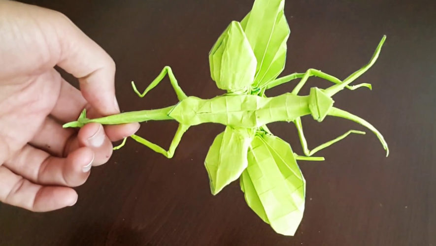 Taller de origami con figuras de insectos   Mayo 2019