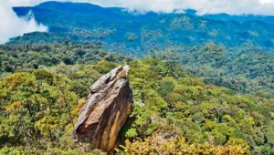 Viaje para conocer la Peña del Ángel en Sierra de las Minas | Junio 2019