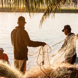 Acuicultura y pesca Guatemala 2019 competitividad empresas