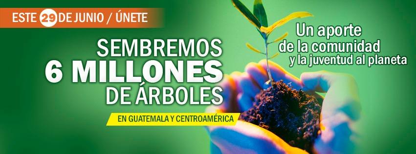 Buscan voluntarios para sembrar 3 millones de árboles en Guatemala 2019