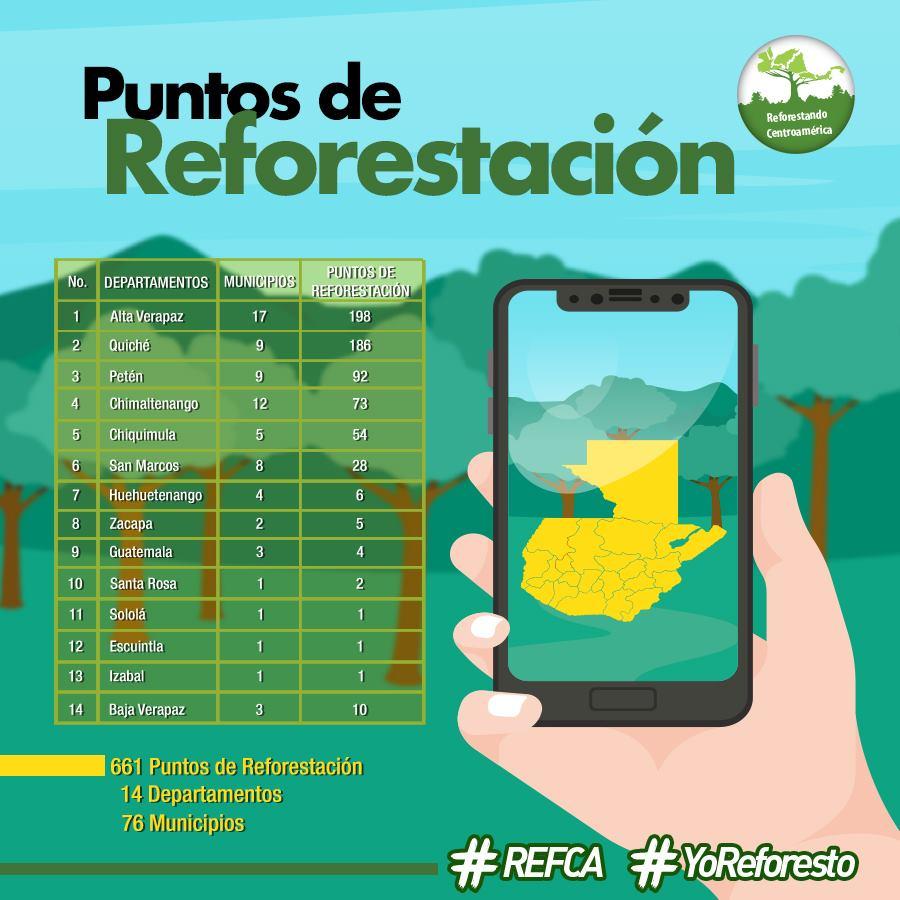 Buscan voluntarios para sembrar 3 millones de árboles en Guatemala