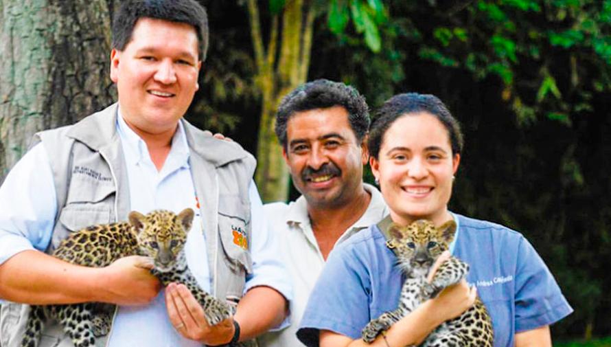 Convocatoria para ser voluntario del Zoológico La Aurora en Guatemala en junio de 2019