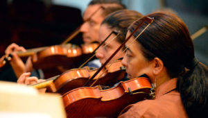 Festival Bach: Primer concierto de Branderburgo | Septiembre 2019