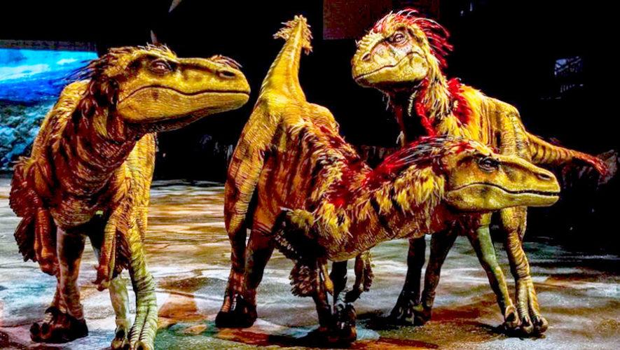 Show de dinosaurios en vivo en el Zoológico La Aurora | Agosto 2019