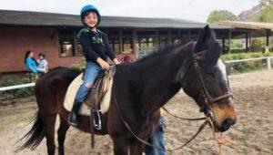 Vacaciones al Galope: Curso de equitación para niños | Junio 2019