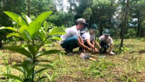 Viaje para reforestar Santa Catarina Barahona, en Sacatepéquez | Junio 2019
