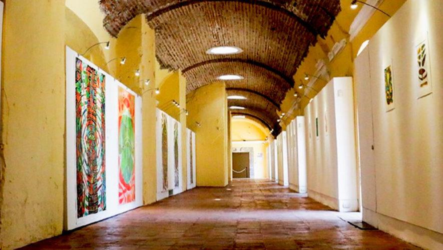 Visita guiada junto al artista de la exposición Aguas Calientes, en Antigua | Junio 2019