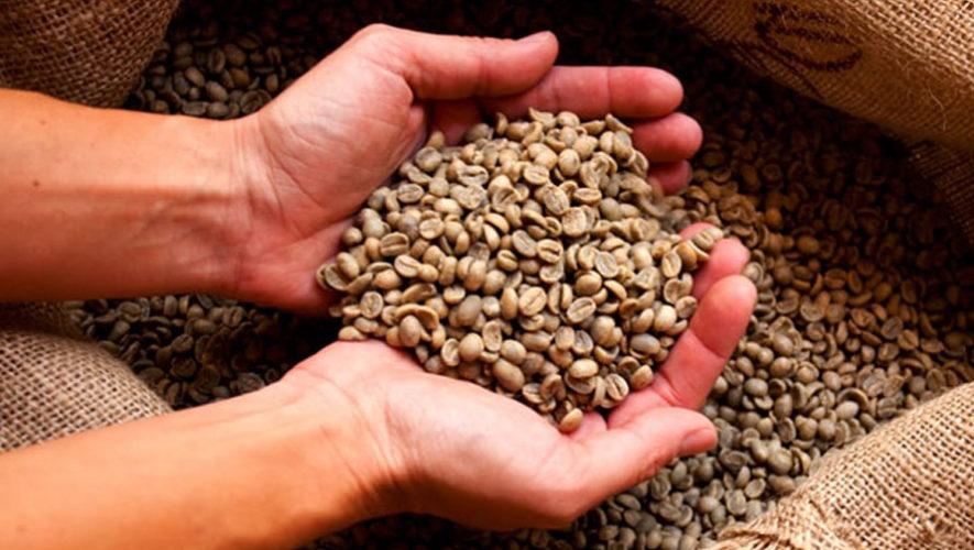 cafe diferenciado guatemalteco Precio cafe