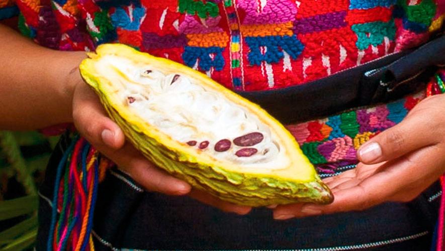 Cacao fino guatemalteco participará en Cocoa of Excellence 2019 en París, Francia