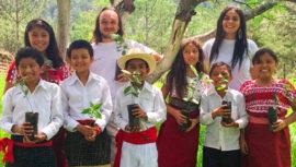 Sembrarán 265,000 árboles en los pueblos alredor del Lago de Atitlán