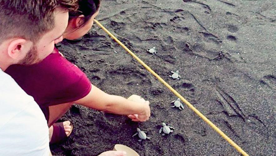Viaje a los manglares para liberar tortugas en Guatemala | Septiembre 2019