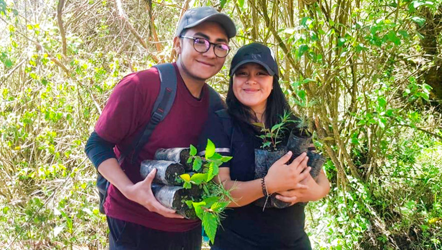 Buscan voluntarios para sembrar árboles en Guatemala