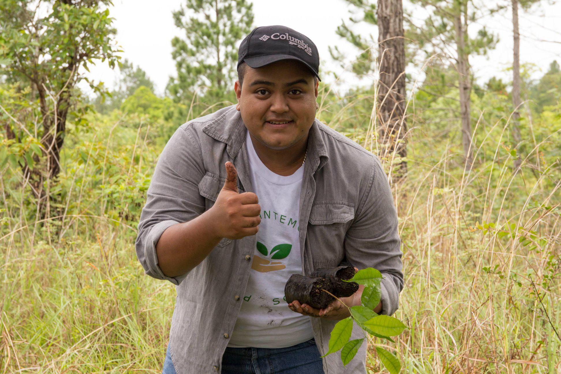 Buscan voluntarios para sembrar árboles en Guatemala en agosto y septiembre de 2019