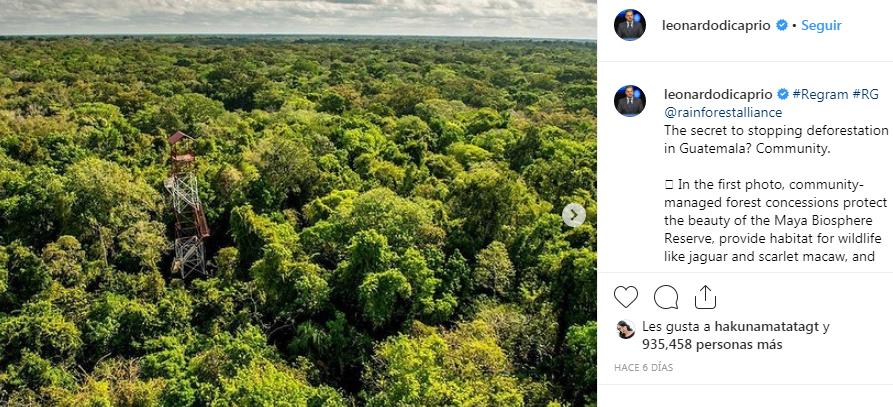 Leonardo DiCaprio invita al mundo a ayudar a la Reserva de la Biosfera Maya de Guatemala