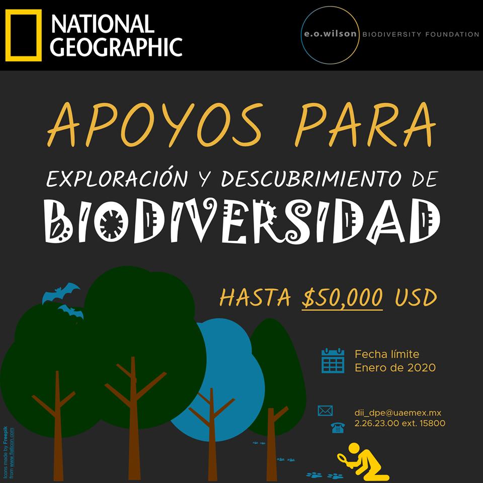 Nat Geo ofrece financiamiento para ambientalistas que buscan explorar la biodiversidad en 2019
