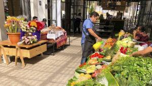 Primer Muni Mercado de Zona 16, Ciudad de Guatemala | Septiembre 2019
