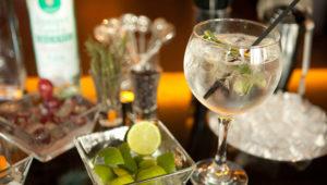 Taller para aprender a preparar gin   Agosto 2019