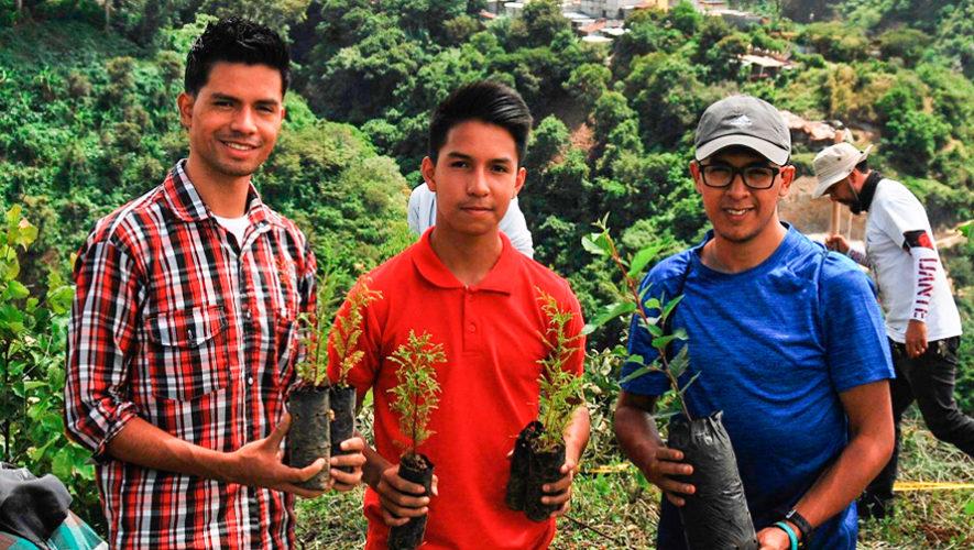 Buscan voluntarios para sembrar árboles en septiembre de 2019