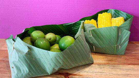 Pasos para hacer un recipiente biodegradable con hojas de plátano
