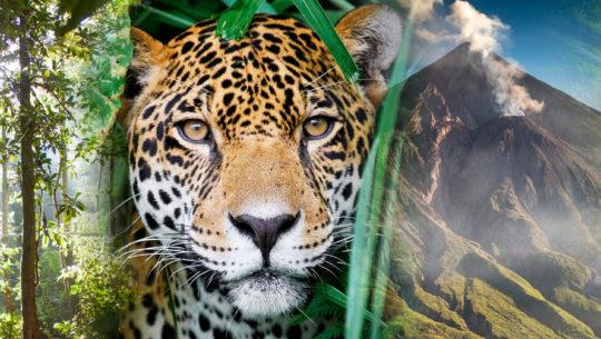 Inventario natural de Guatemala