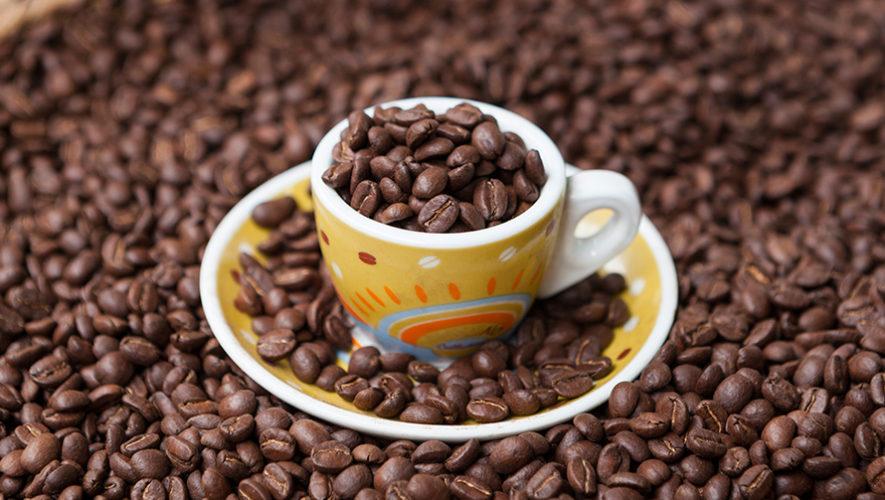 El mejor café de Guatemala es de Huehuetenango, según la Taza de la Excelencia 2019