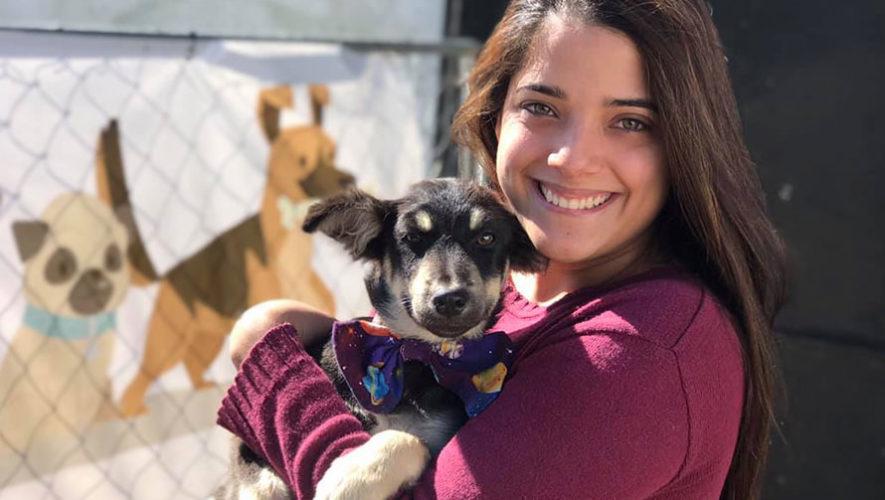 Feria de adopciones de mascotas | Octubre 2019