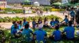 Biofest, Festival de la Biodiversidad en Guatemala   Noviembre 2019