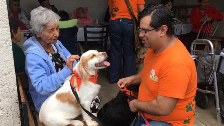 Charla informativa para ser parte del voluntariado de Dog Therapy | Diciembre 2019
