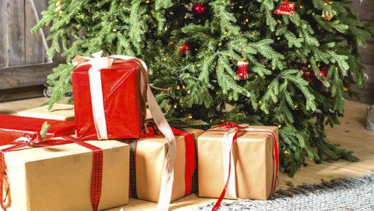 Guía de regalos para la época navideña 2019 portada 2