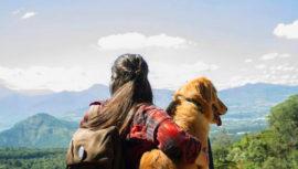 Destinos de Guatemala para viajar en con tu mascota