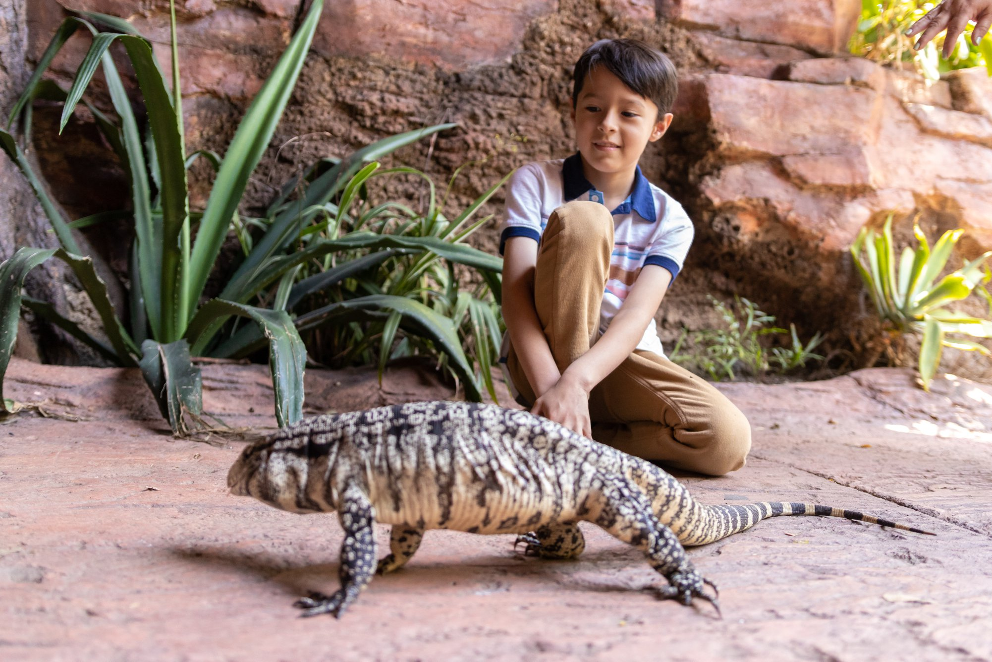 (Foto: Parque Zoológico Nacional La Aurora)