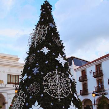 Fotos navideñas para la familia en Navidad Cayalá, un regalo para compartir 1