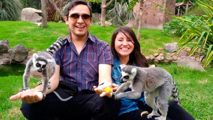 Convocatoria para ser voluntario del Zoológico La Aurora
