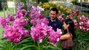 Exposición Nacional de Orquídeas | Febrero 2020