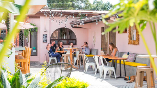 Maya Papaya entre los hostales más populares del mundo para visitar en el 2020