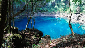 Viaje a Laguna Brava y Cenotes de Candelaria   Marzo 2020