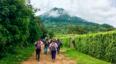 Caminata de ascenso al Volcán de Agua | Marzo 2020