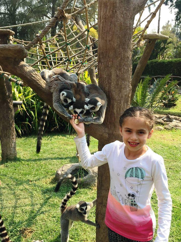 COVID-19 Apoya al Zoológico La Aurora comprando Tours VIP en preventa 2020