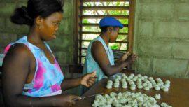 El pan de coco que se prepara de manera artesanal en Izabal