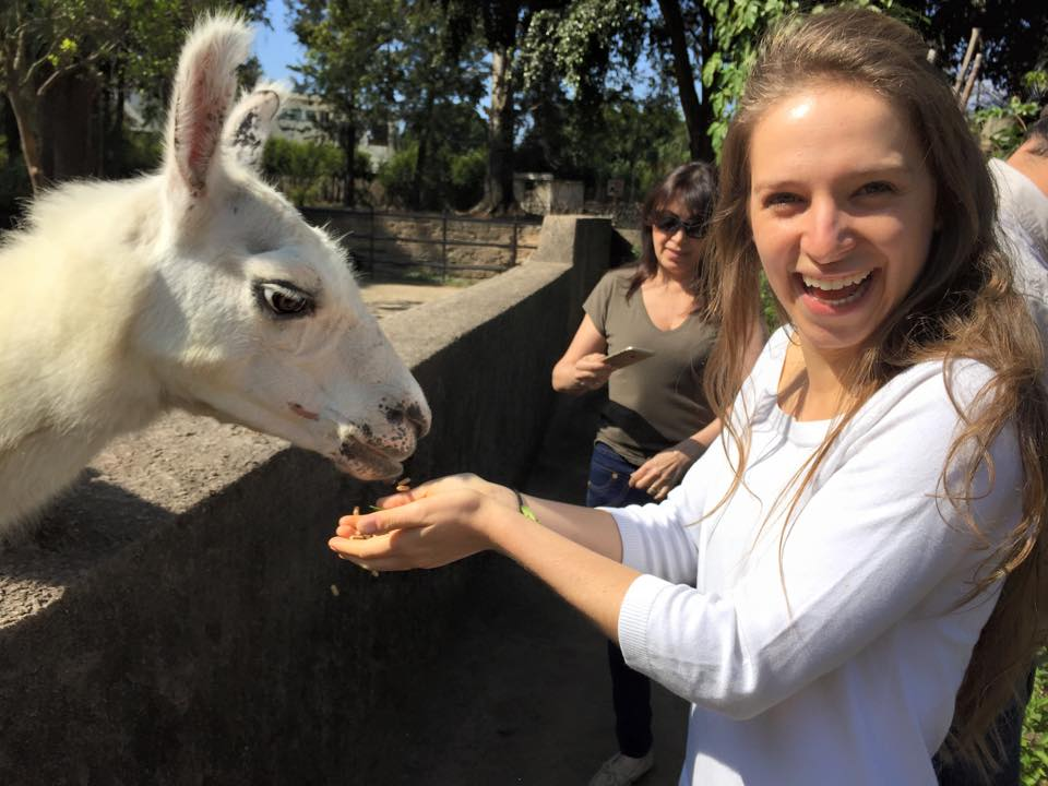 Tours VIP en el Zoológico La Aurora