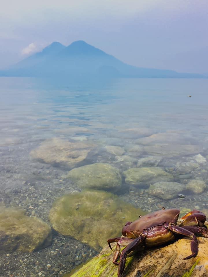 Agua cristalina del Lago de Atitlán, Sololá