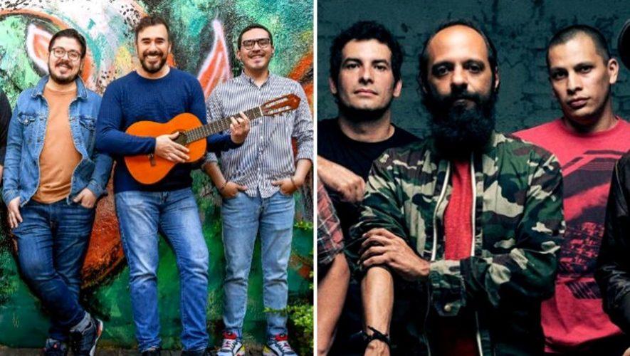 Guate x Guate, Festival de música con Bohemia, Malacates y más | Junio 2020