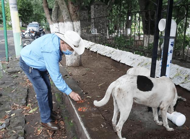 Comedor para perros en Amatitlán