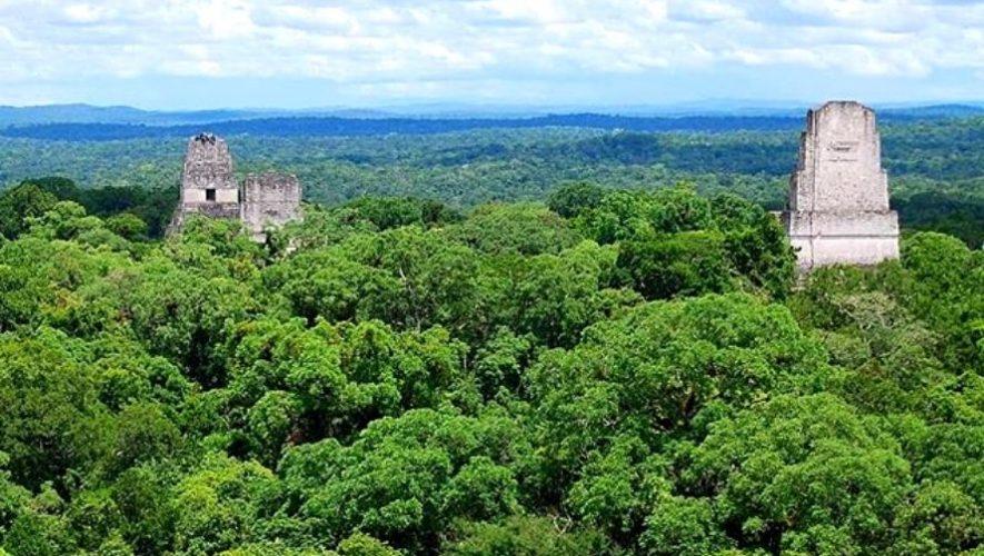 Proyecto busca renovar el puente de Brooklyn y proteger los bosques guatemaltecos