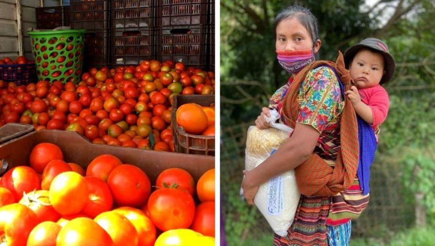 Desarrollo en Movimiento, banco de alimentos en Guatemala, brinda apoyo a familias