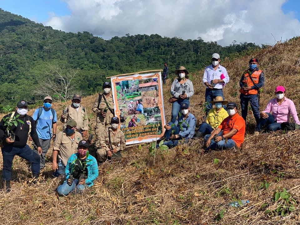 Guatemaltecos sembraron más de 6 mil árboles en bosques de Izabal en agosto 2020